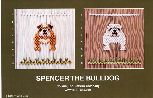 Spencer the Bulldog