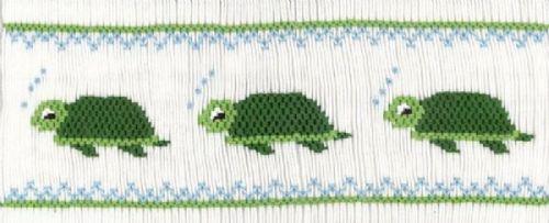 The Turtle's Trek