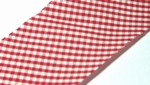 Red Gingham Precut Bias