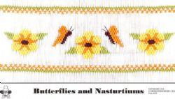 Butterfiles & Nasturtiums