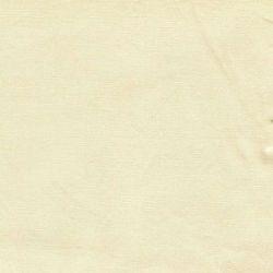 Pima Broadcloth-Creme