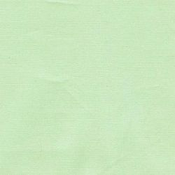 Pima Broadcloth-Mint